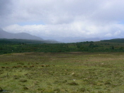 View towards Loch Arkaig from N of Spean Bridge