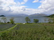 View up Loch Linnhe from North Ballachulish